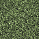 SBR grün
