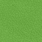 RAL6018 grün