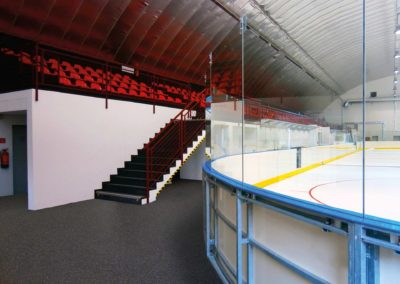 SPORTEC® color Ice Ring